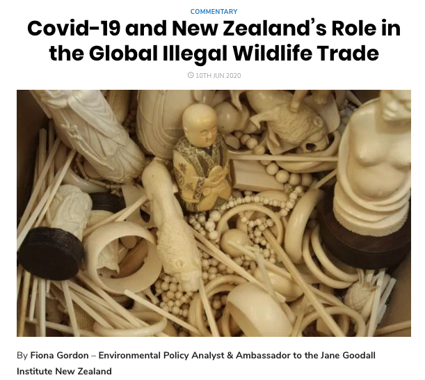 Covid19 and NZ illegal wildlife trade